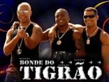 BONDE DO TIGRÃO  OFICIAL
