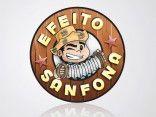 ..:Forró Efeito Sanfona:..
