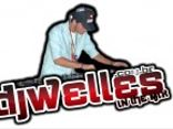 DjWelles 2010