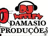 DJ WESLEY FORRO DO DAMASIO