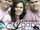Trio gape