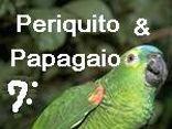 Periquito e Papagaio