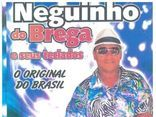 NEGUINHO DO BREGA