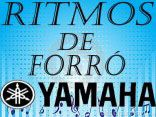 ROBERTINHO RITMOS2