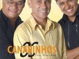 OS CANARINHOS