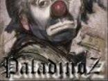 PaladinoZ