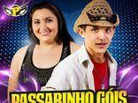 PASSARINHO GÓIS & FORROZÃO 2.0