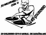 Dj Goldinho atualizado 29/11/12